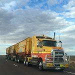 Estudo revela que quase um terço dos camiões emitem níveis perigosos de poluição do ar